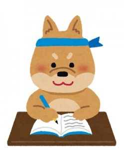 animal_study_inu